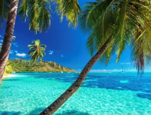 Why Choose Tahiti