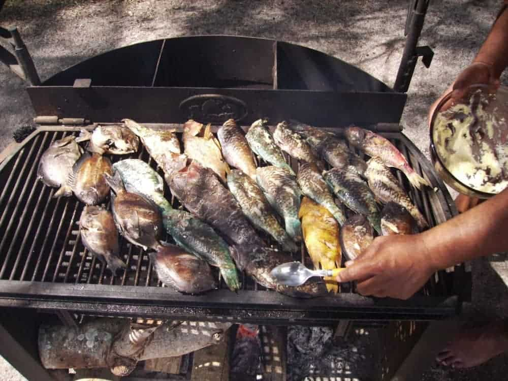 Grill the mornings catch for lunch with friends on Tahiti Island For Sale